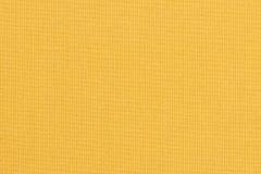 Spectrum-Daffodil